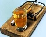 jocuri de noroc online, consumul cronic de alcool si interventia in adictie