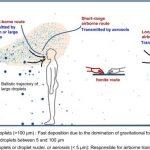 Picăturile lui Flügge, stranutul si coronavirusul dimensiune si distanta de siguranta